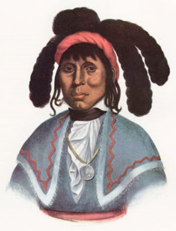Tampa Bay History Center, 1825 painting of Chief Micanopy by Charles Bird King