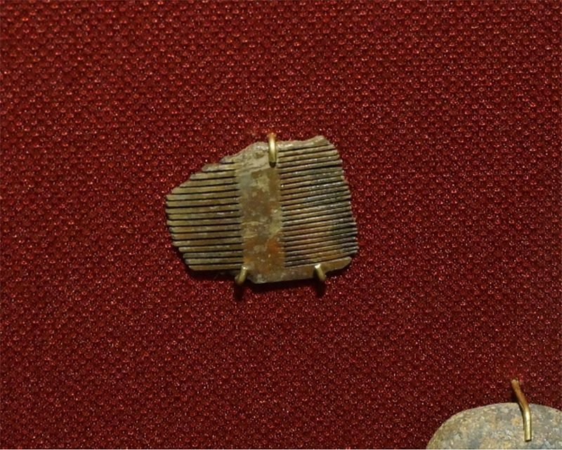 Photograph of centuries-old lice comb artifact from the Tampa Bay History Center collection.
